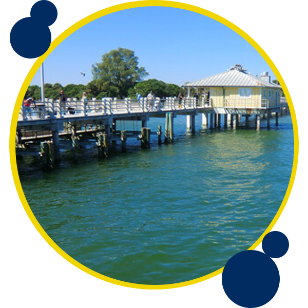 Image of dock and water with people fishing in Florida